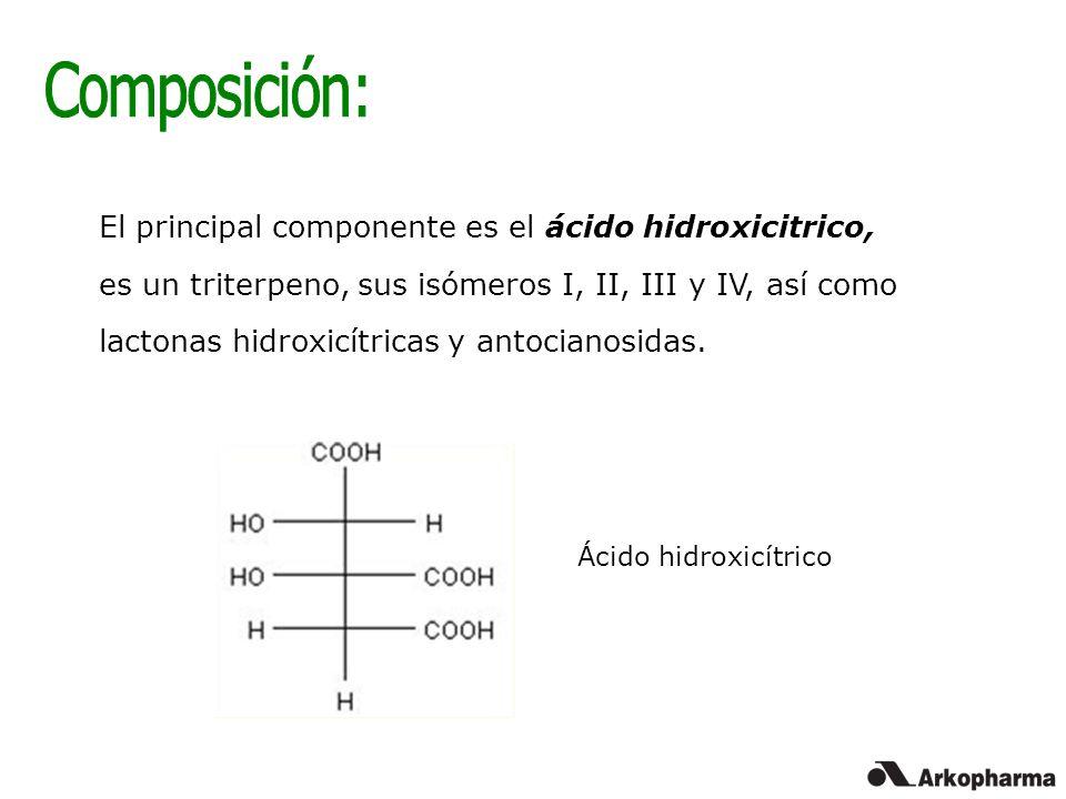 Composición: El principal componente es el ácido hidroxicitrico,