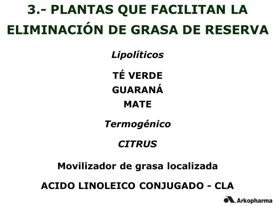3.- PLANTAS QUE FACILITAN LA ELIMINACIÓN DE GRASA DE RESERVA
