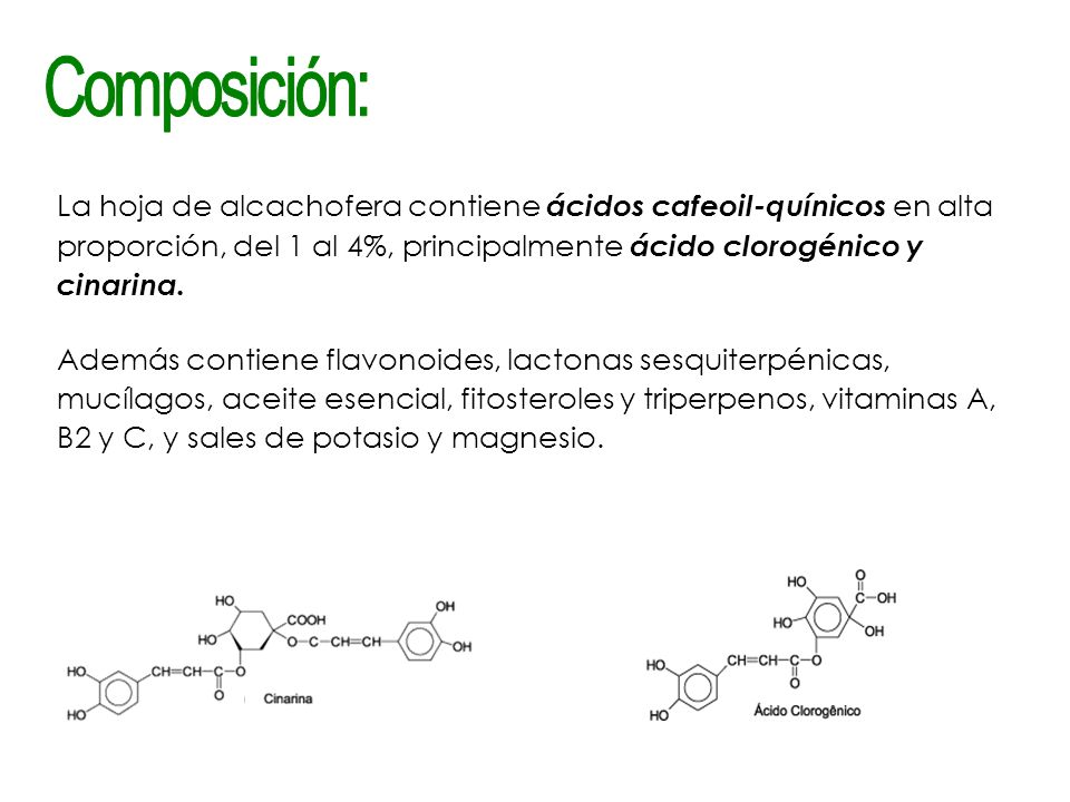 Composición: La hoja de alcachofera contiene ácidos cafeoil-quínicos en alta proporción, del 1 al 4%, principalmente ácido clorogénico y cinarina.