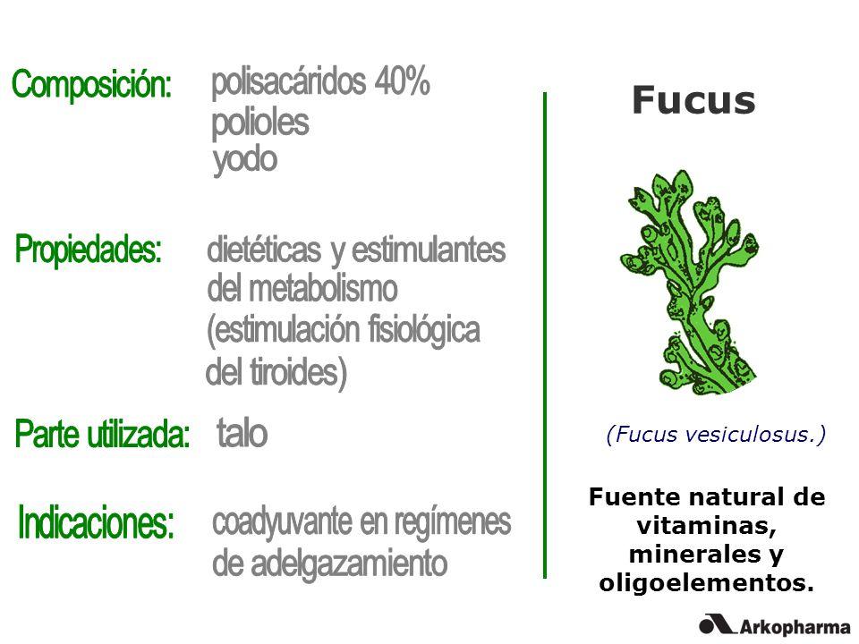 dietéticas y estimulantes del metabolismo (estimulación fisiológica