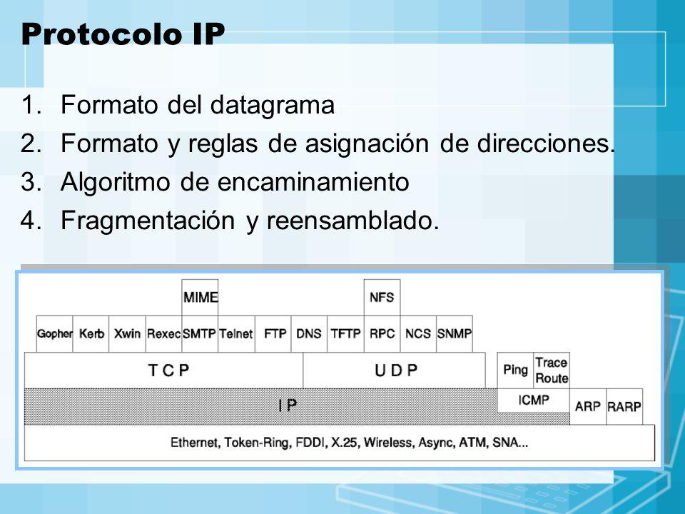 Protocolo IP Formato del datagrama
