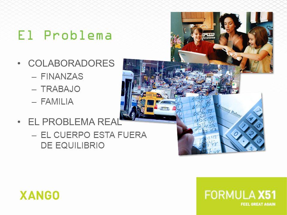 El Problema Colaboradores El Problema real Finanzas trabajo Familia