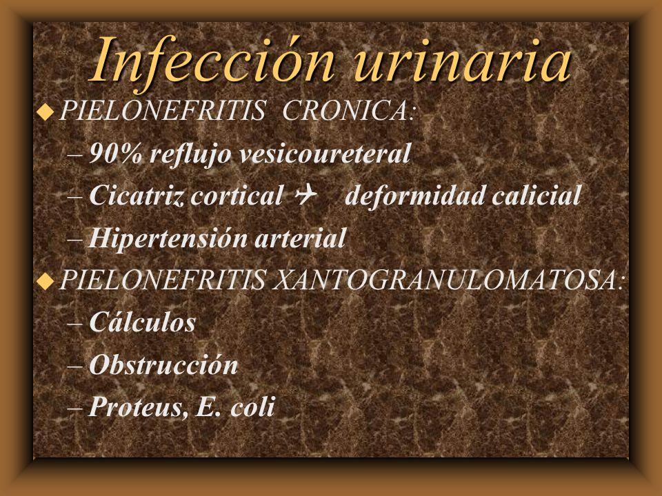 Infección urinaria PIELONEFRITIS CRONICA: 90% reflujo vesicoureteral