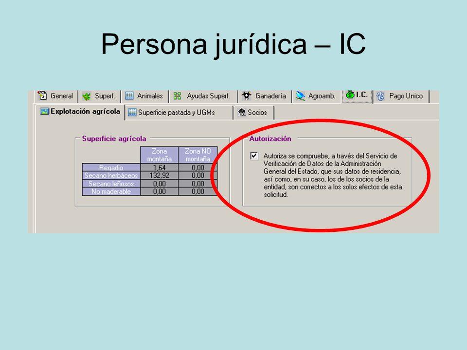 Persona jurídica – IC