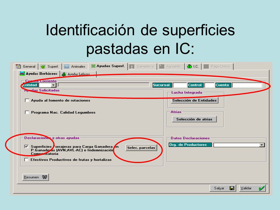 Identificación de superficies pastadas en IC: