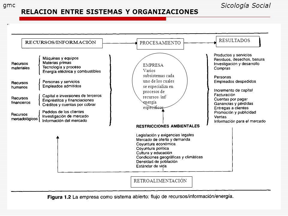 RELACION ENTRE SISTEMAS Y ORGANIZACIONES