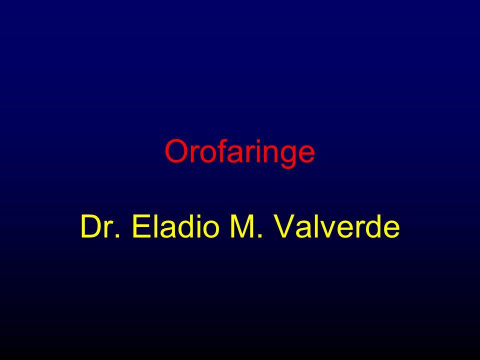 Orofaringe Dr. Eladio M. Valverde