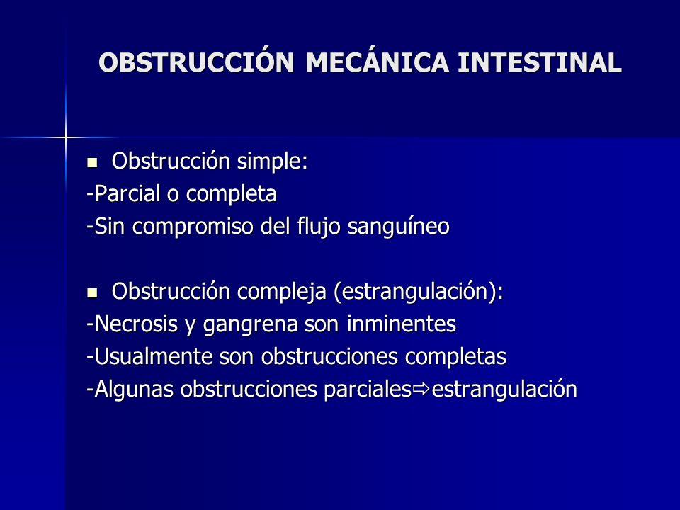 OBSTRUCCIÓN MECÁNICA INTESTINAL