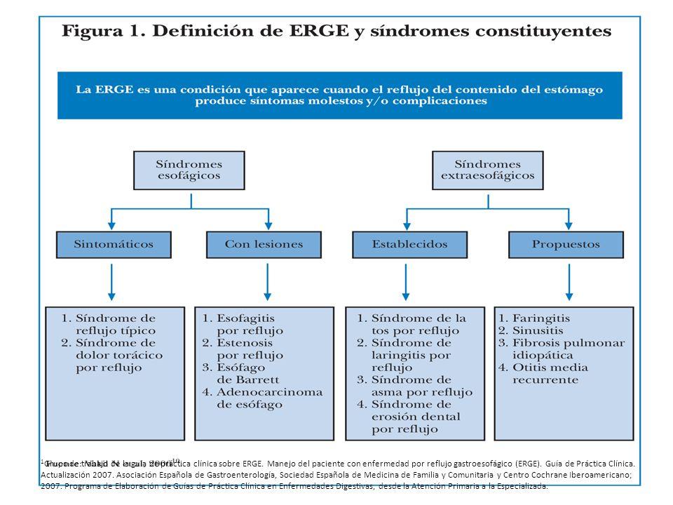 1Grupo de trabajo de la guía de práctica clínica sobre ERGE