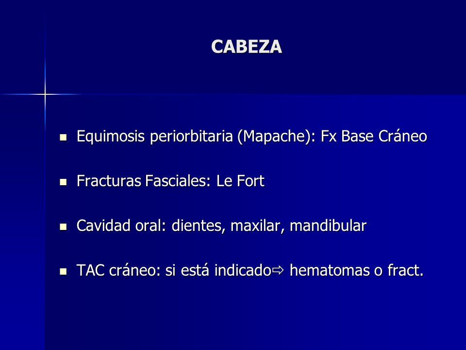 CABEZA Equimosis periorbitaria (Mapache): Fx Base Cráneo
