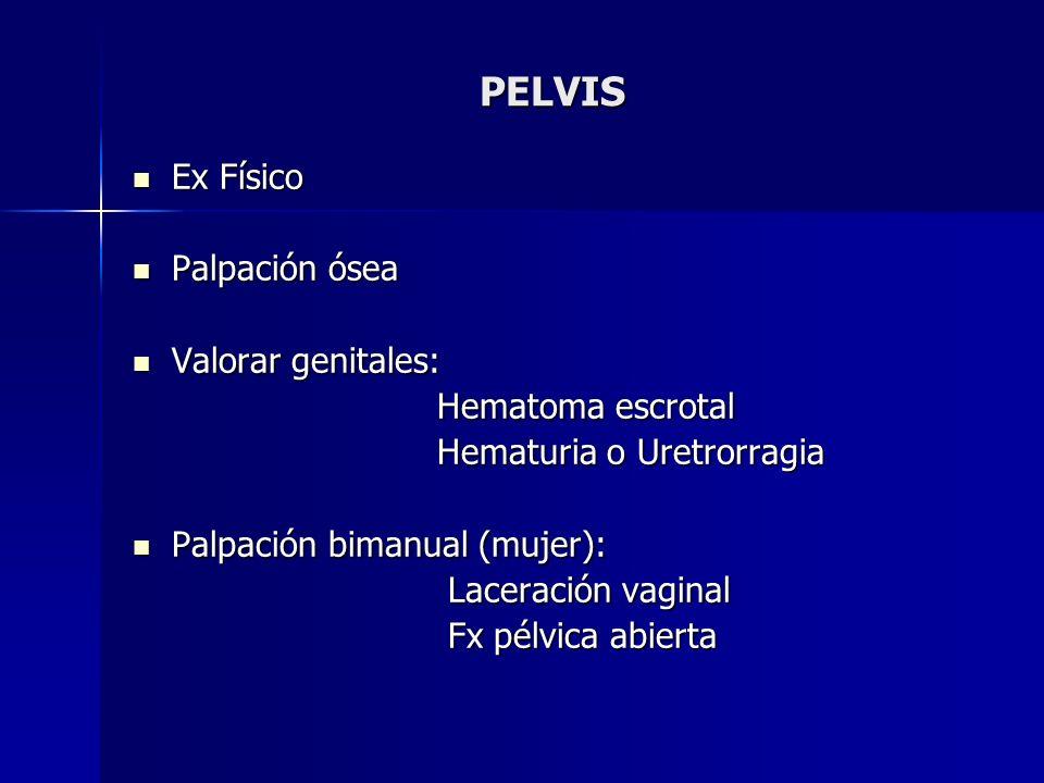 PELVIS Ex Físico Palpación ósea Valorar genitales: Hematoma escrotal