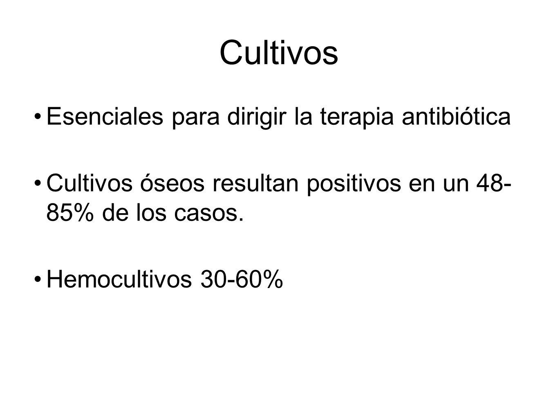 Cultivos Esenciales para dirigir la terapia antibiótica