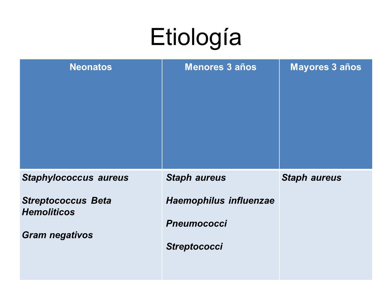 Etiología Neonatos Menores 3 años Mayores 3 años Staphylococcus aureus