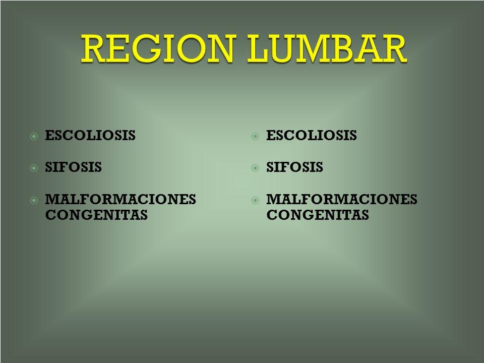 REGION LUMBAR ESCOLIOSIS SIFOSIS MALFORMACIONES CONGENITAS ESCOLIOSIS