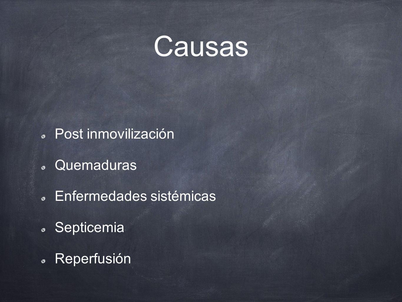 Causas Post inmovilización Quemaduras Enfermedades sistémicas