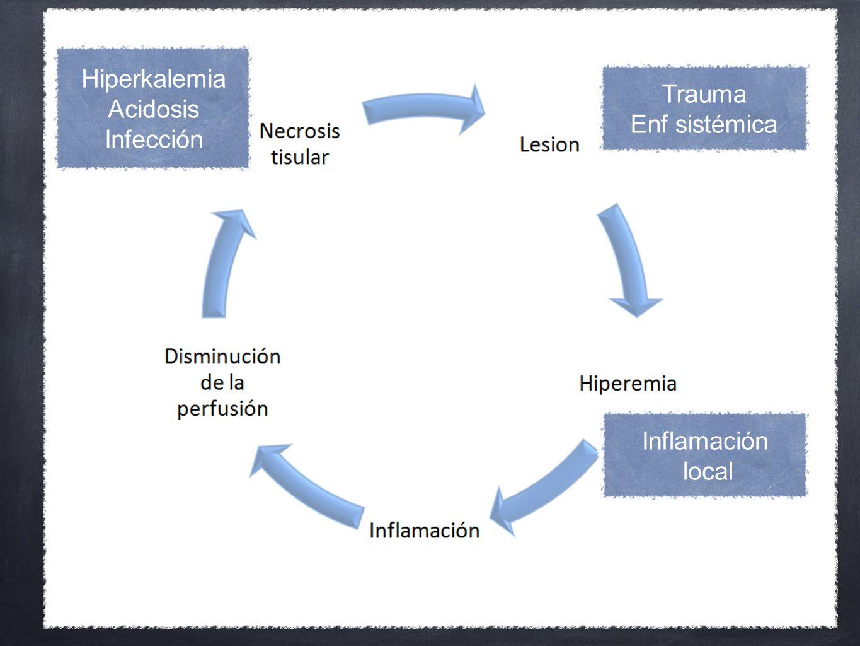 Hiperkalemia Acidosis Infección Trauma Enf sistémica Inflamación local