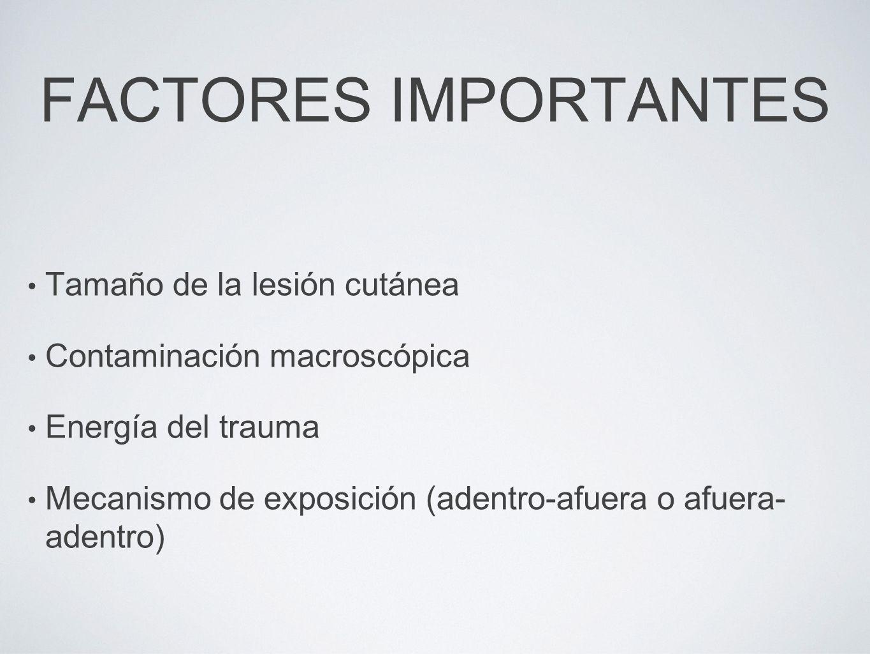 FACTORES IMPORTANTES Tamaño de la lesión cutánea