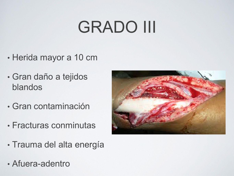 GRADO III Herida mayor a 10 cm Gran daño a tejidos blandos