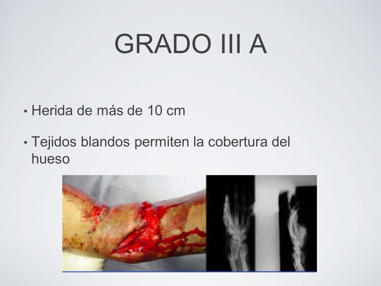 GRADO III A Herida de más de 10 cm