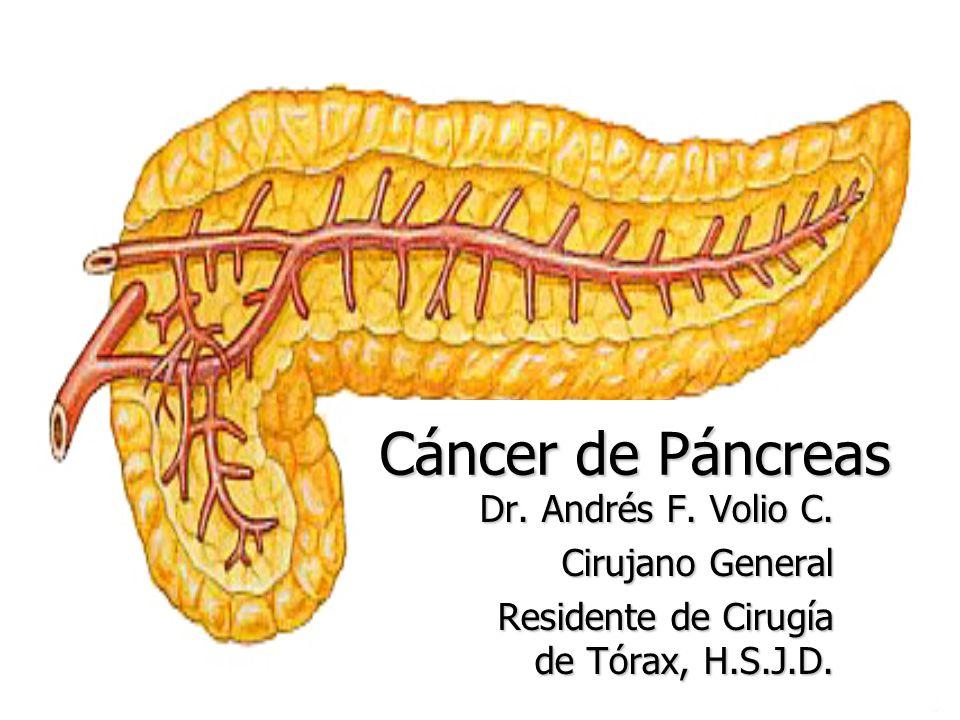 Cáncer de Páncreas Dr. Andrés F. Volio C. Cirujano General