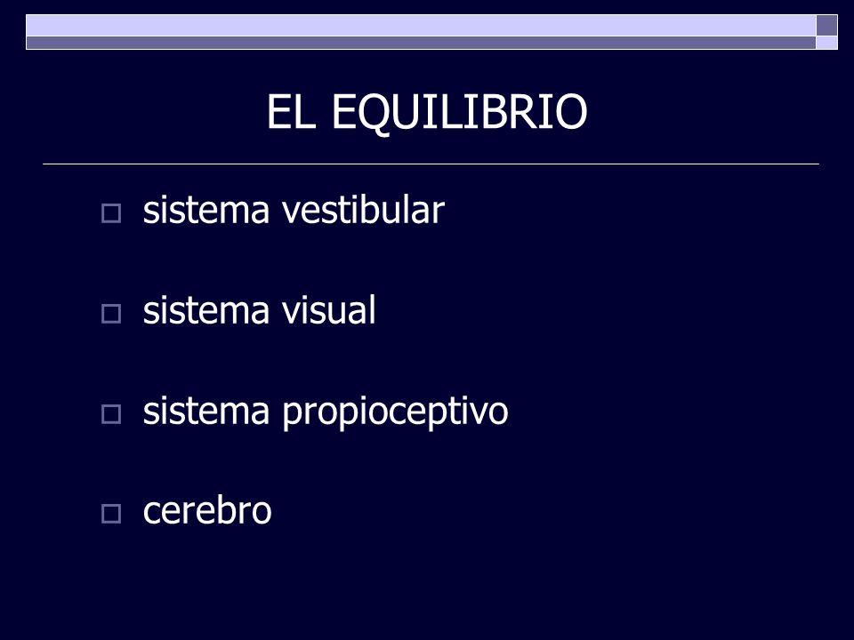EL EQUILIBRIO sistema vestibular sistema visual sistema propioceptivo