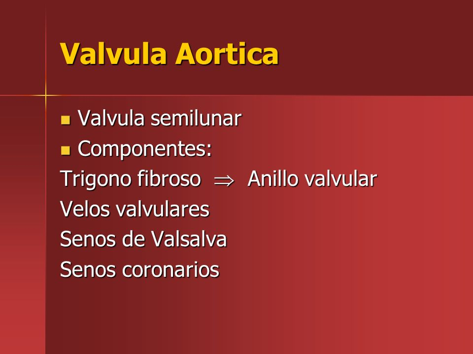Valvula Aortica Valvula semilunar Componentes: