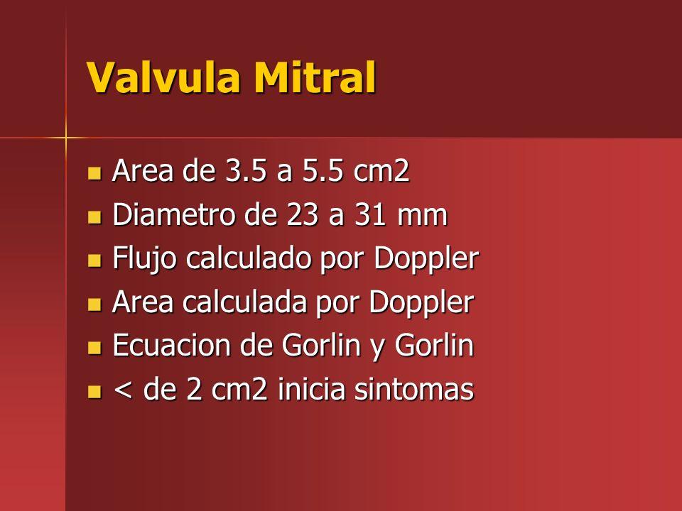Valvula Mitral Area de 3.5 a 5.5 cm2 Diametro de 23 a 31 mm