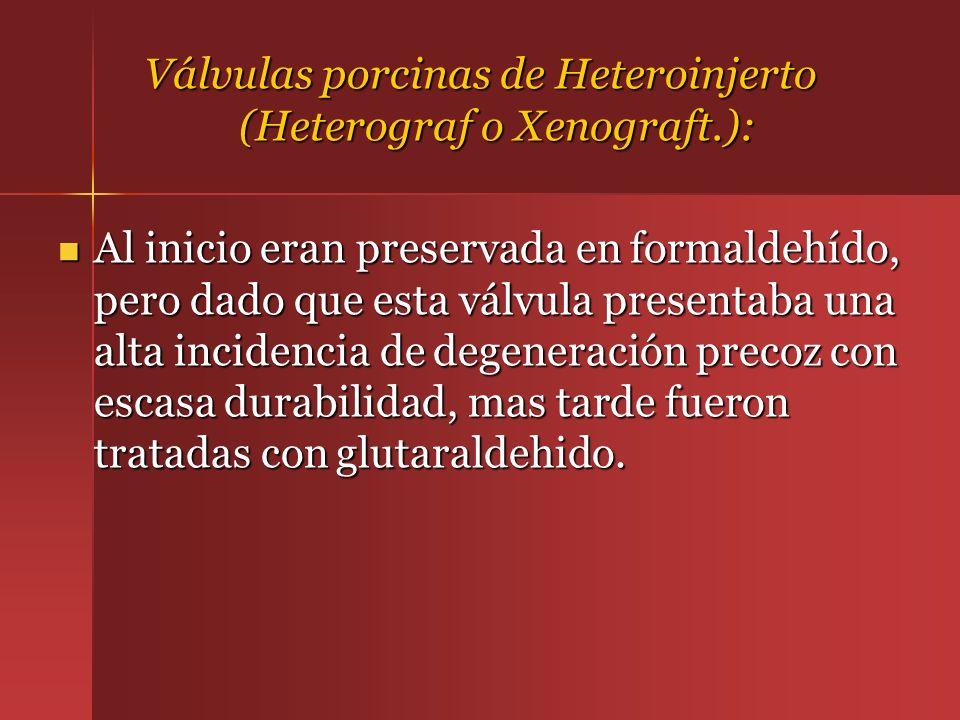 Válvulas porcinas de Heteroinjerto (Heterograf o Xenograft.):