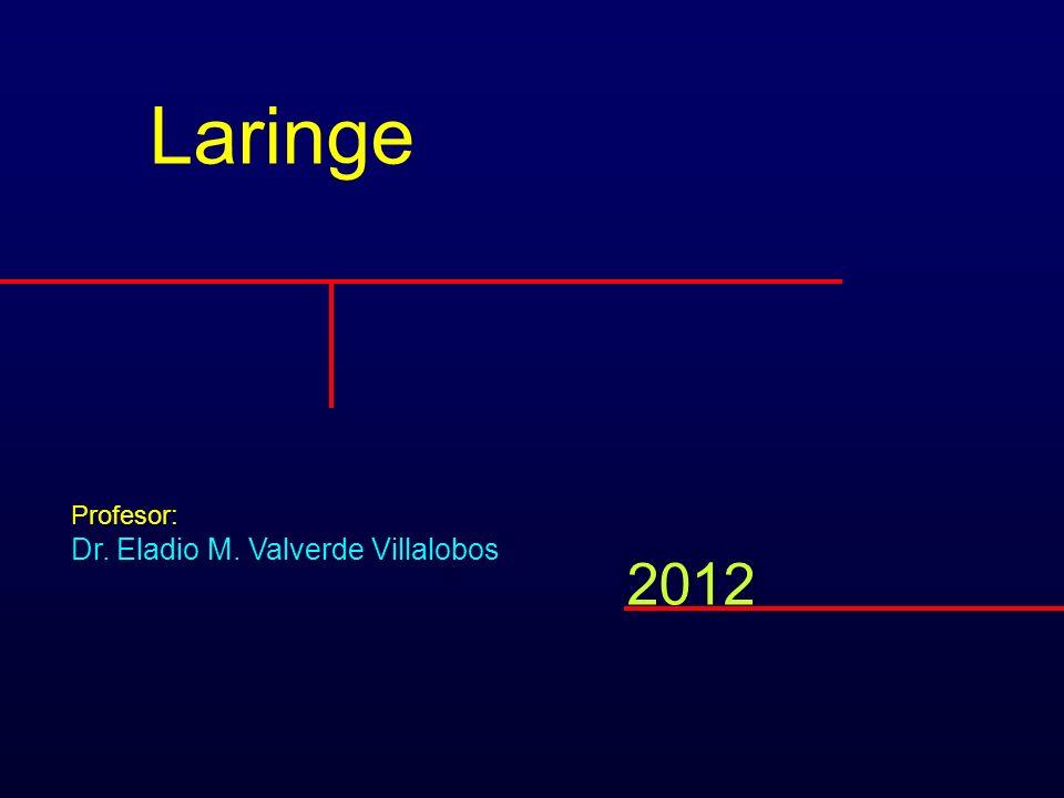 Laringe Profesor: Dr. Eladio M. Valverde Villalobos 2012