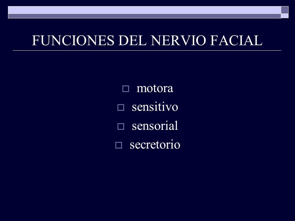 FUNCIONES DEL NERVIO FACIAL