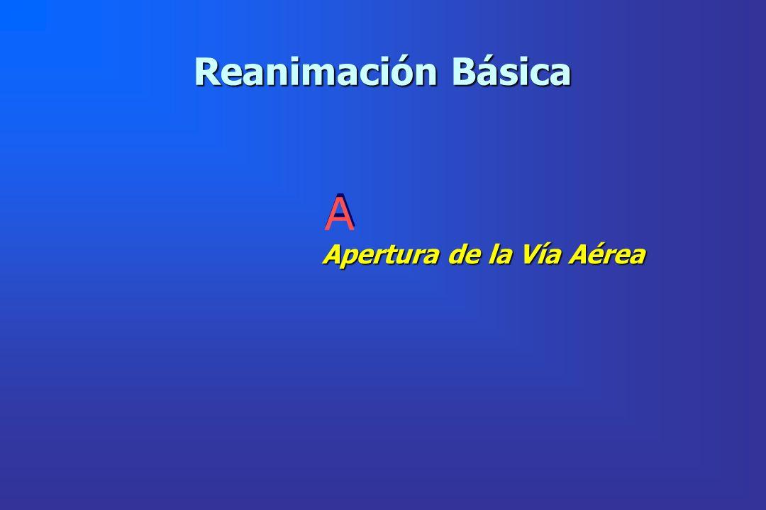 Reanimación Básica A Apertura de la Vía Aérea