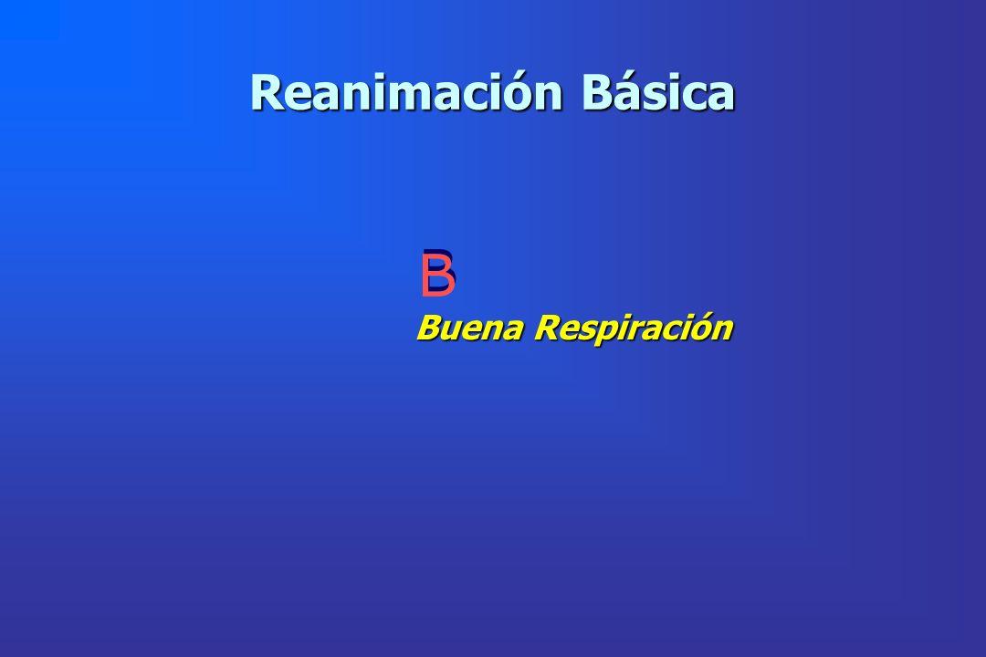 Reanimación Básica B Buena Respiración