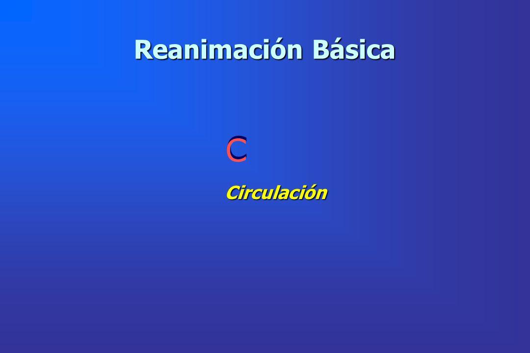 Reanimación Básica C Circulación