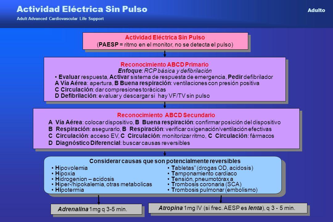 Actividad Eléctrica Sin Pulso Adulto
