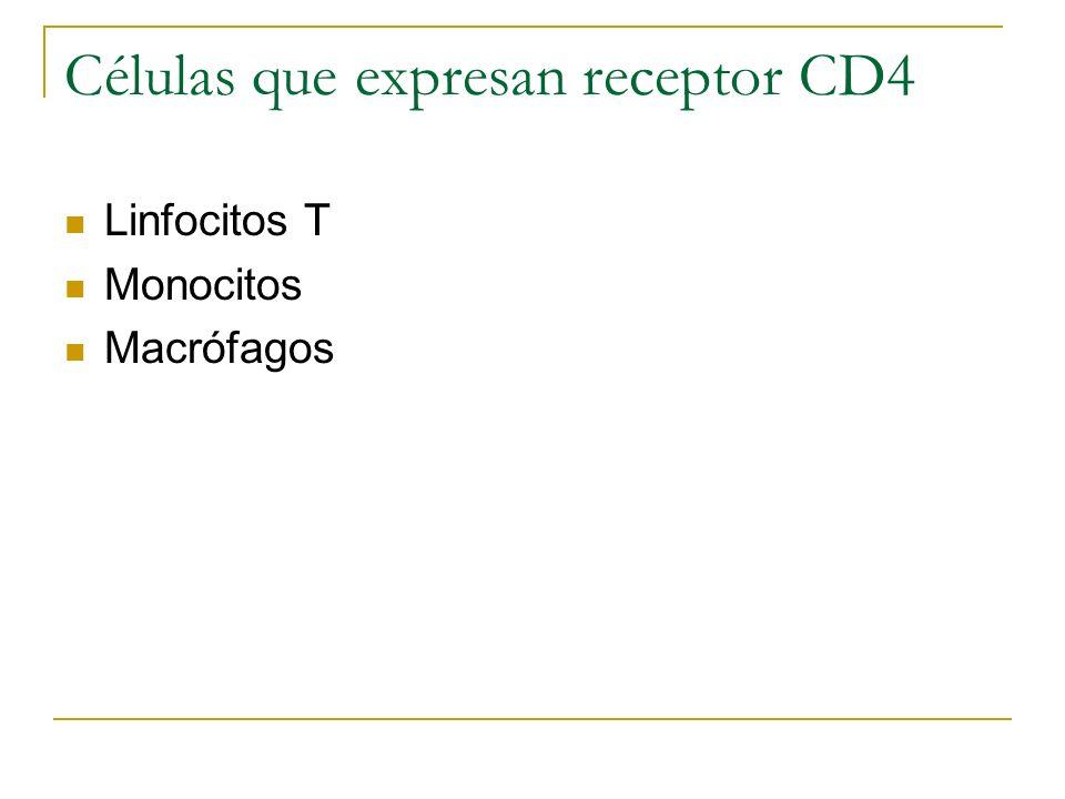 Células que expresan receptor CD4