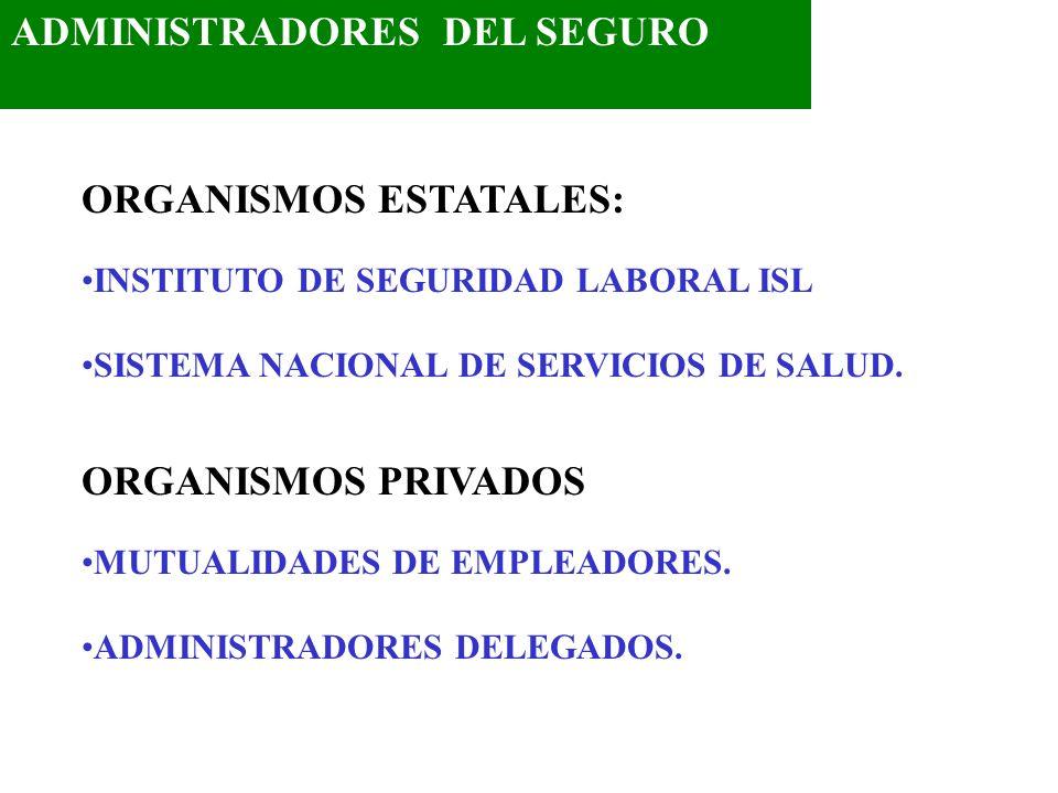 ADMINISTRADORES DEL SEGURO