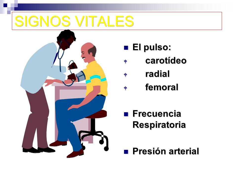 SIGNOS VITALES El pulso: carotídeo radial femoral