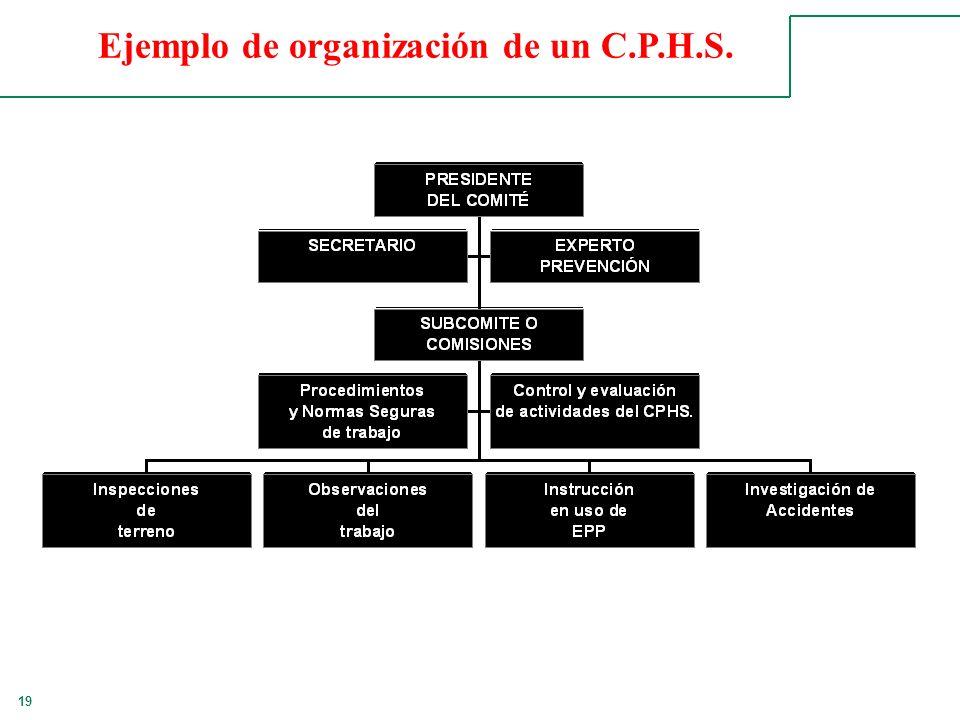 Ejemplo de organización de un C.P.H.S.