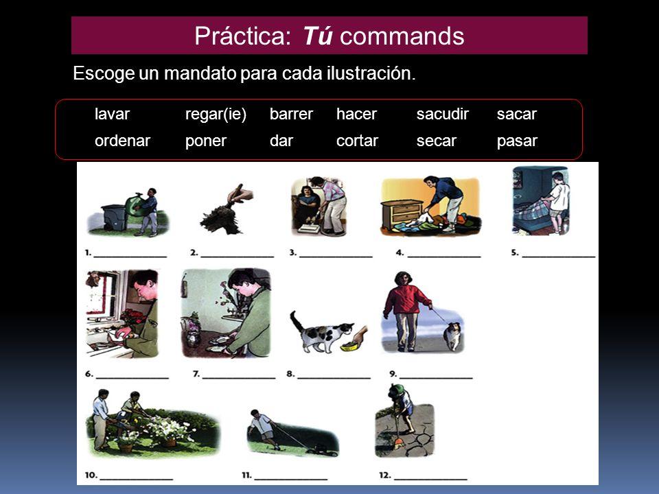Práctica: Tú commands Escoge un mandato para cada ilustración. lavar