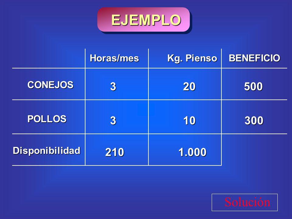 EJEMPLO Solución 3 20 500 3 10 300 210 1.000 Horas/mes Kg. Pienso