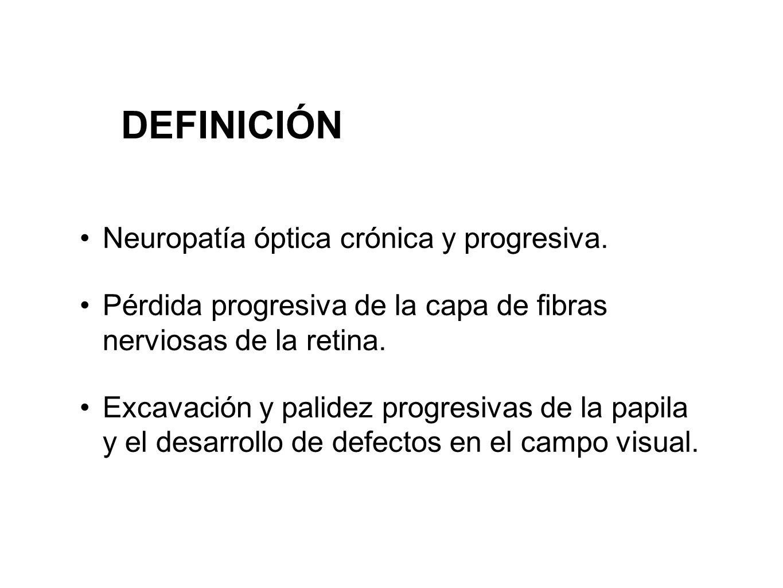 DEFINICIÓN Neuropatía óptica crónica y progresiva.