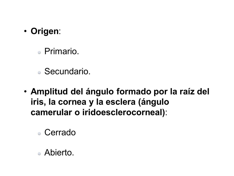 Origen:Primario. Secundario. Amplitud del ángulo formado por la raíz del iris, la cornea y la esclera (ángulo camerular o iridoesclerocorneal):