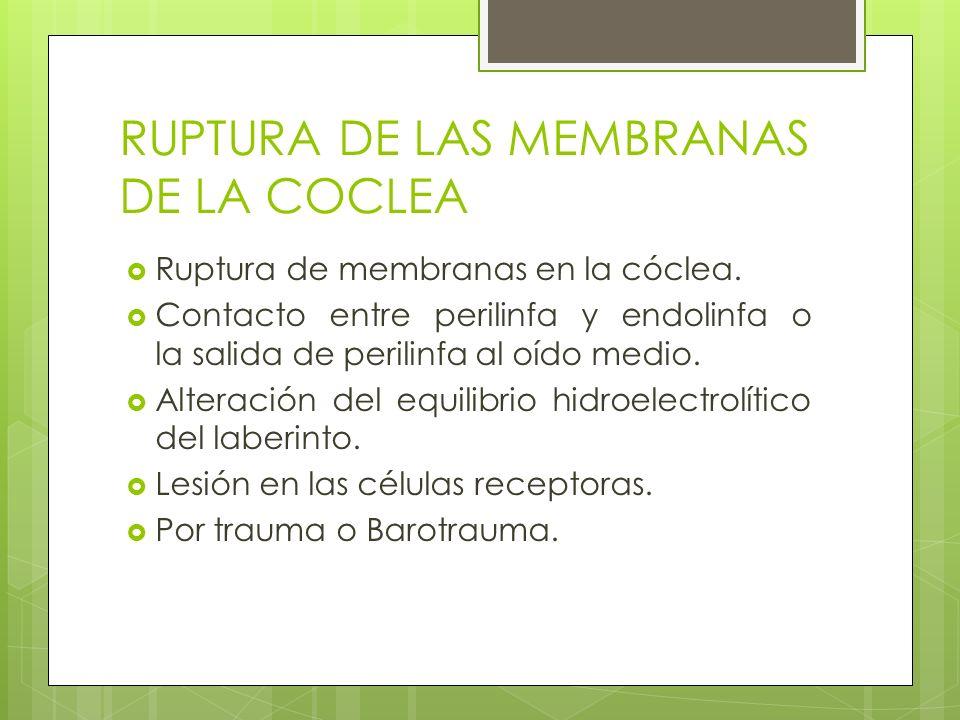 RUPTURA DE LAS MEMBRANAS DE LA COCLEA