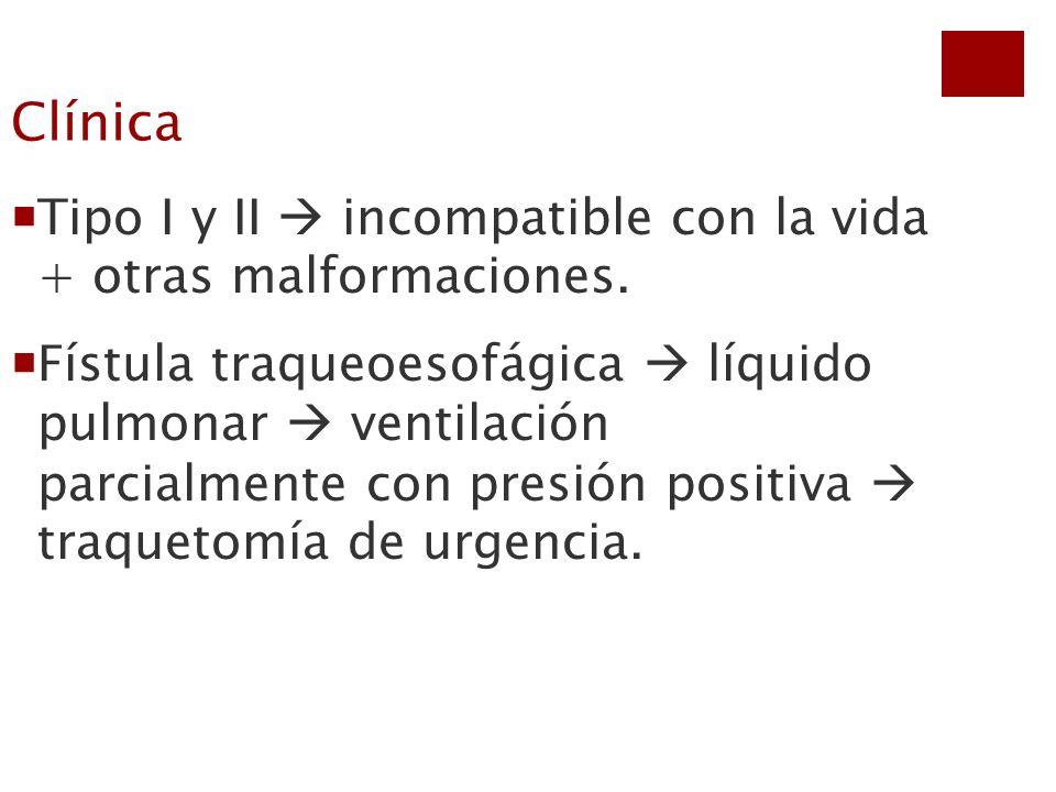Clínica Tipo I y II  incompatible con la vida + otras malformaciones.