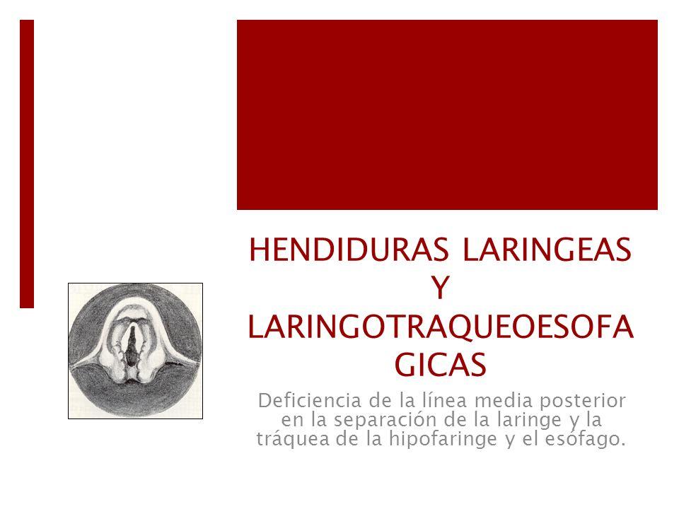 HENDIDURAS LARINGEAS Y LARINGOTRAQUEOESOFAGICAS