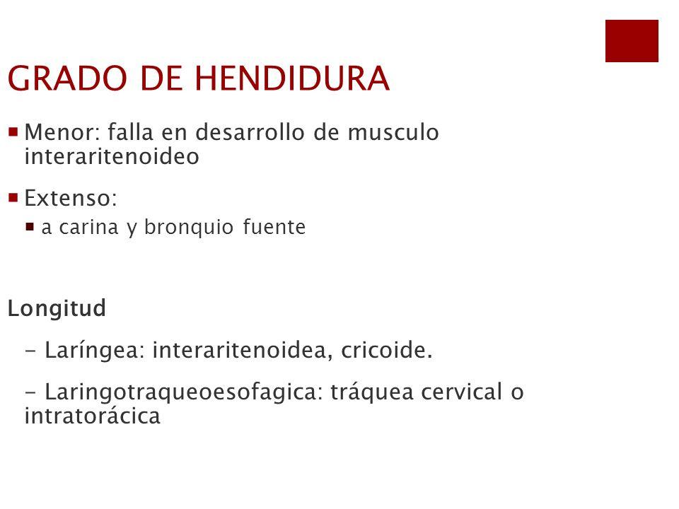 GRADO DE HENDIDURA Menor: falla en desarrollo de musculo interaritenoideo. Extenso: a carina y bronquio fuente.