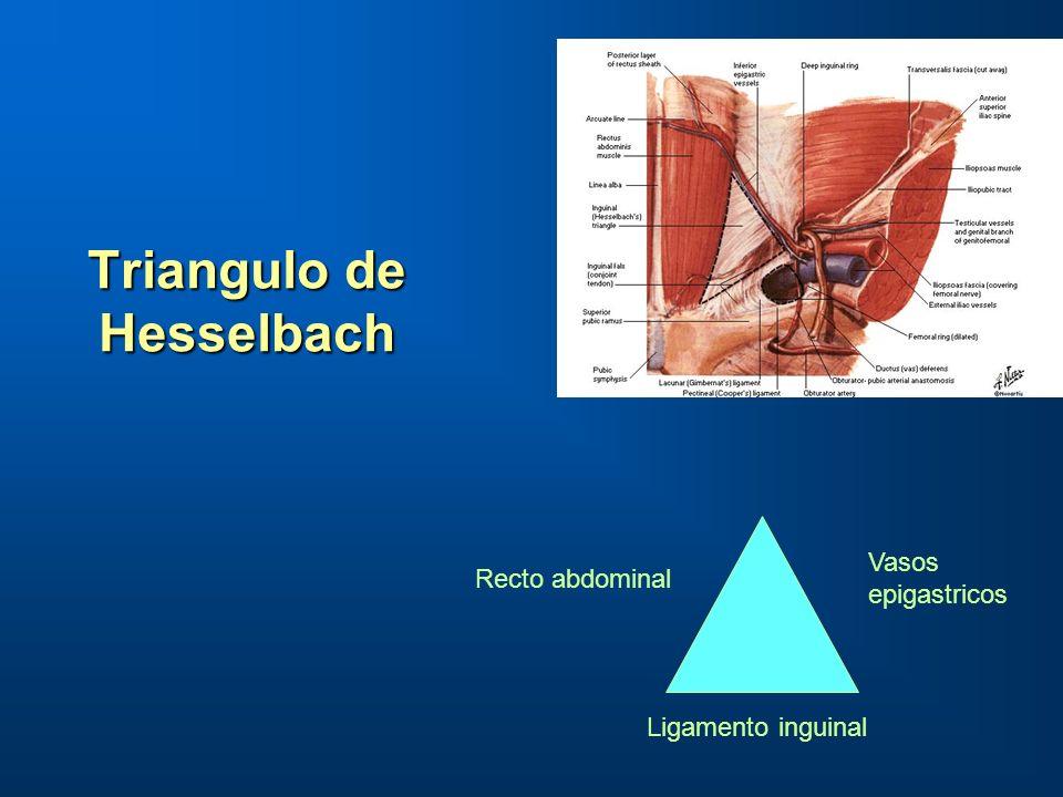 Triangulo de Hesselbach