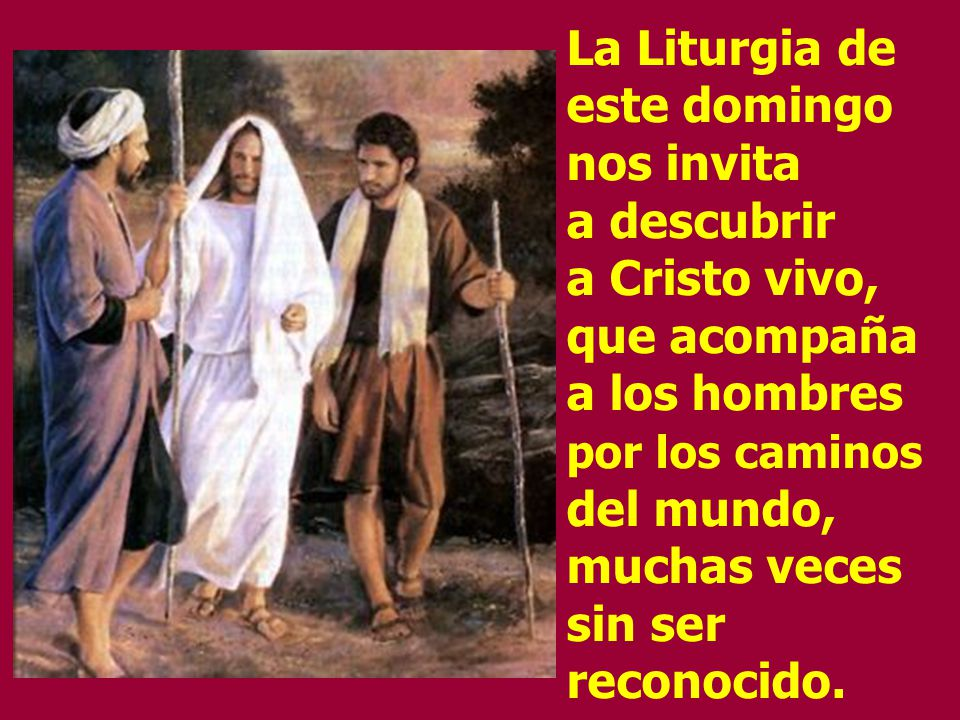 La Liturgia de este domingo nos invita a descubrir