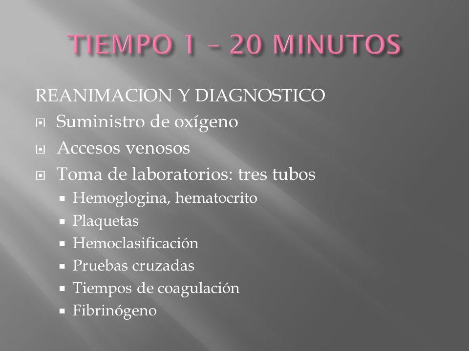 TIEMPO 1 – 20 MINUTOS REANIMACION Y DIAGNOSTICO Suministro de oxígeno