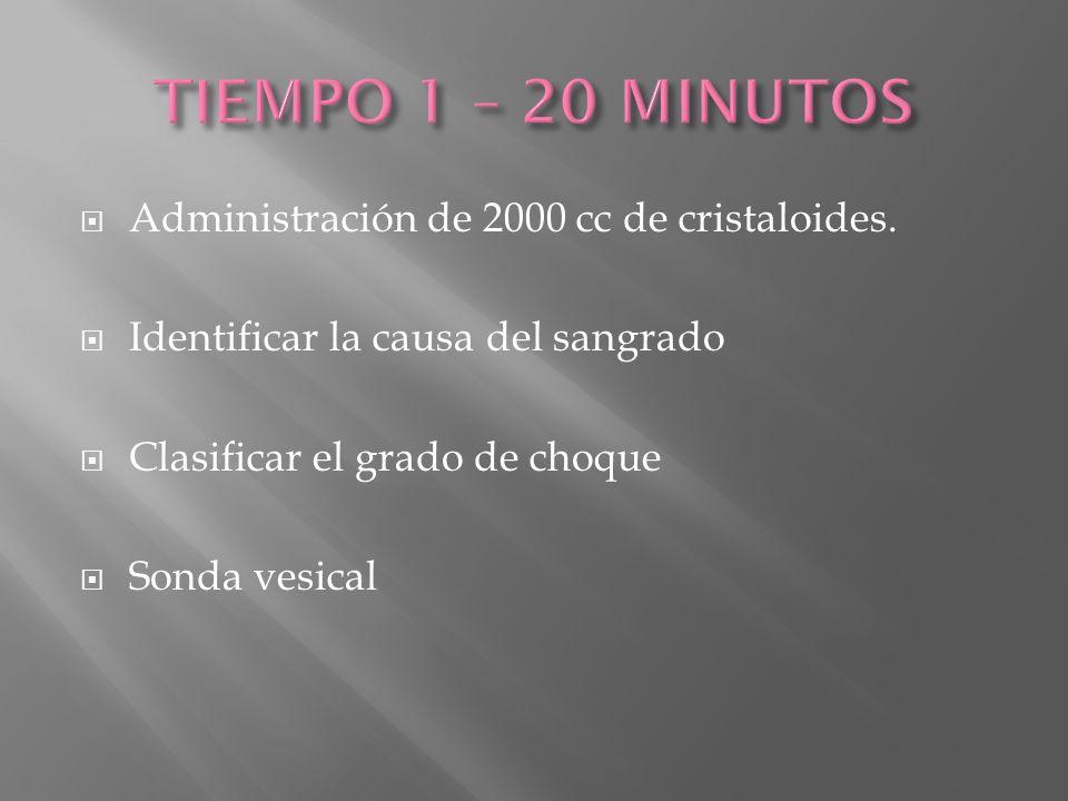 TIEMPO 1 – 20 MINUTOS Administración de 2000 cc de cristaloides.
